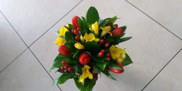 Kód: B016 obsah: Tulipán, frézie, hypericum, zeleň  cena: 425,-